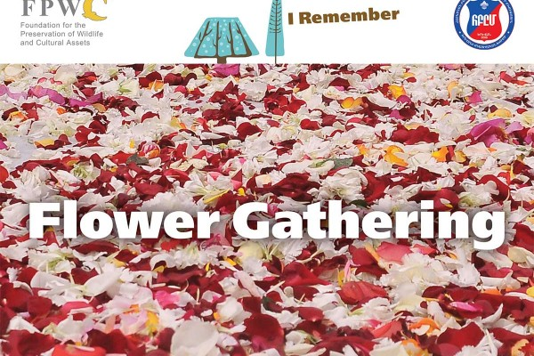 Flower-gathering-Instagram-eng-optim